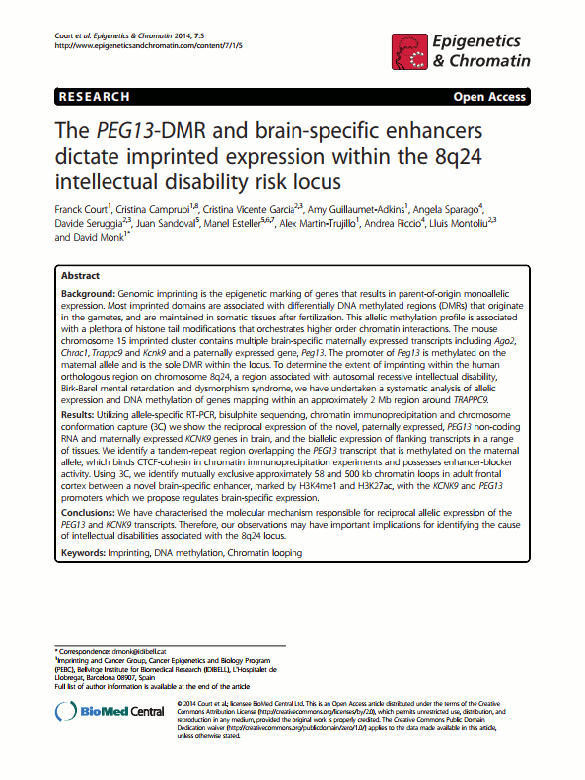 Court, Frank, et al. 'The PEG13-DMR and brain-specific enhancers dictate imprinted expression within the 8q24 intellectual disability risk locus.' Epigenetics & chromatin 7.1 (2014): 1.